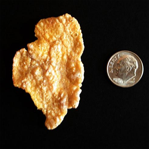 Illinois shaped Cornflake