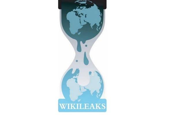 WikiLeaks website DDoSed