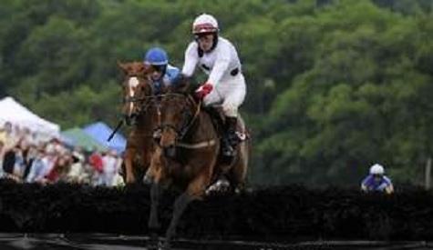 Arcadius Horse Dies Winning Iroquois Steeplechase