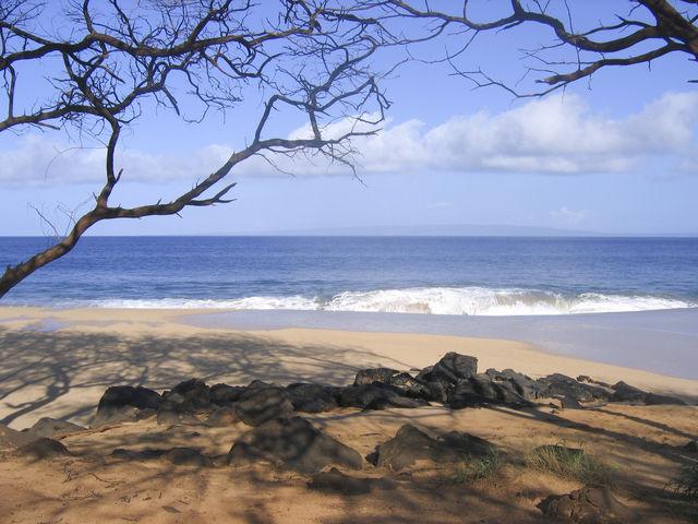 Oracle CEO Ellison to Buy Most of Hawaiian Island Lanai