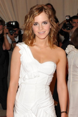 "Emma Watson ""In Talks"" To Play Anastasia Steele in Fifty Shades of Grey?"