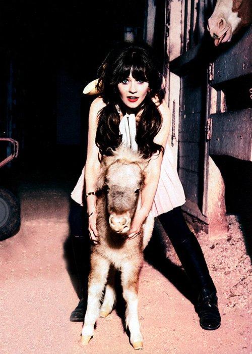 Zooey Deschanel Glamour Photo shoot