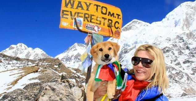 Rescued Stray Dog Climbs Mount Everest!