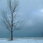 9_ways_beat_cold