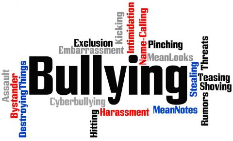 Chronic bullying more dangerous to kids' health