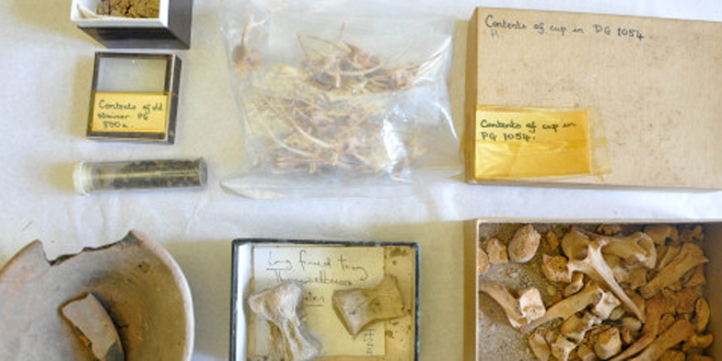 4500 Years Old Artifacts Found in Britain Cupboard