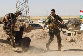 Iraq Government forces execute 255 Sunni prisoners as revenge attack
